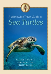 Sea Turtles cover