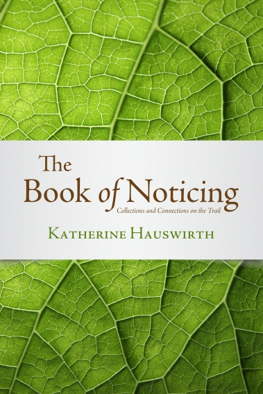 book-of-noticing-final